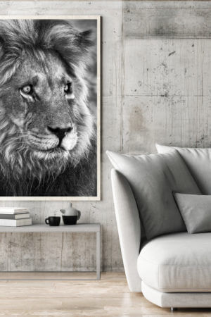 Fine Art Canvas Home Decor